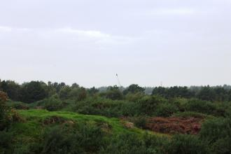 The landscape of Freshfield Dune Heath