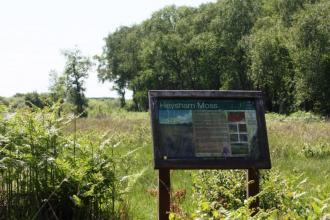 A Lancashire Wildlife Trust sign at the entrance to Heysham Moss nature reserve