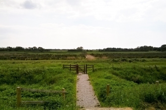 A footpath at Lunt Meadows nature reserve in Merseyside
