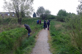 City Nature Challenge recording event - Moston Fairway