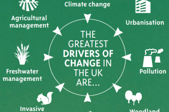 The main drivers of nature decline identified by the UK State of Nature report 2019
