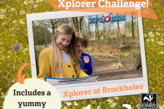 May Xplorer at Brockholes