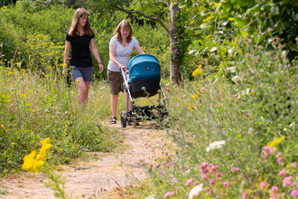 Two women walking through a wildflower area with a pram