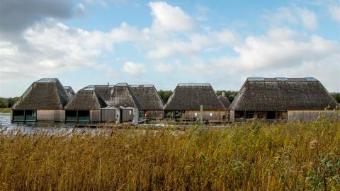 The floating Visitor Village in front of the reeds at Brockholes nature reserve