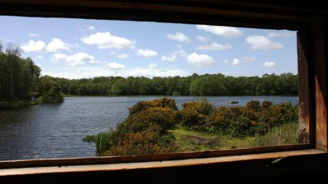 The view from the Rufford Hide at Mere Sands Wood