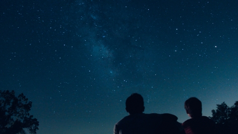 Two people stargazing on a clear night next to trees