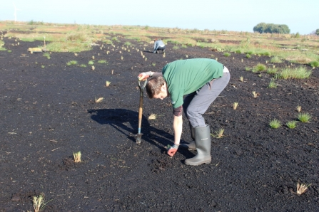 Andy - Carbon Landscape Trainee