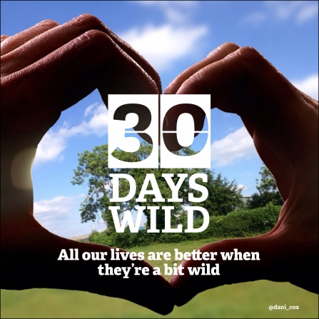 30 Days Wild is a wonderful way to experience the nature where you live