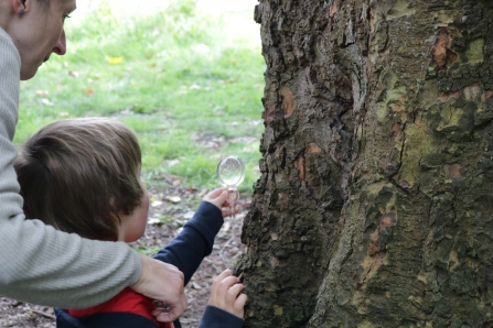 A little boy and his mum enjoying a bug hunt at Whitworth Park and Gallery