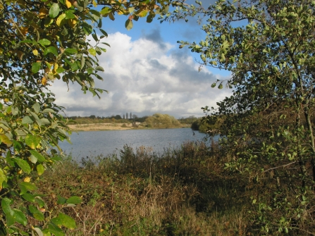 A view of one of the pools at Wigan Flashes Nature Reserve