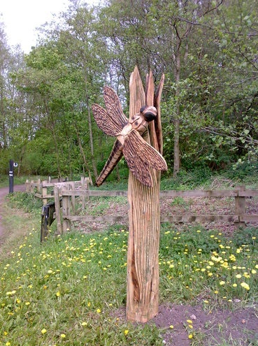 A large wooden dragonfly statue standing amongst wildflowers at Darcy Lever Gravel Pits
