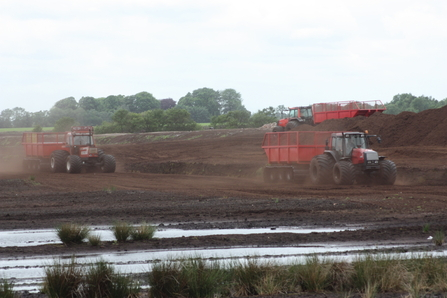 Tractors and trailers removing peat from Little Woolden Moss leaving a brown wasteland devoid of life