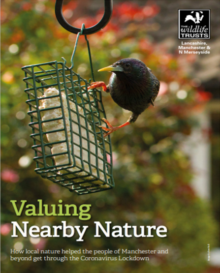 The front cover of Lancashire Wildlife Trust's Nearby Nature report