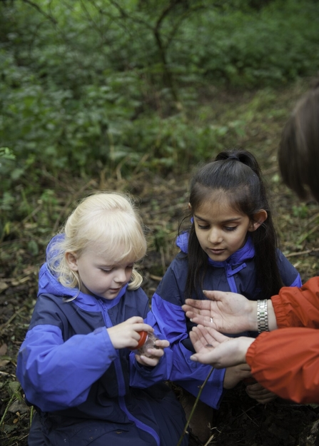 Two young children looking at a bug in a bug pot during a Forest School session