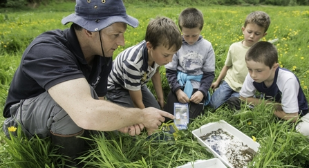 A group of children learning about insects in a field