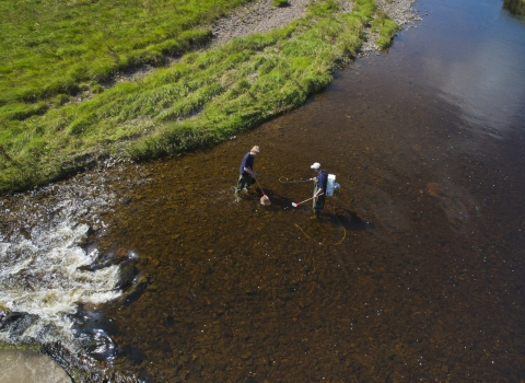 Two scientists standing in a river and measuring water quality