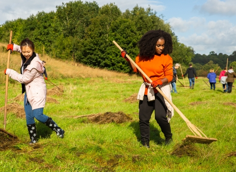 Siemens employees taking part in a Wild Wellbeing Day at Brockholes Nature Reserve