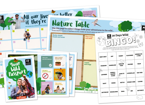 A 30 Days Wild pack containing a wall chart, bingo card, nature table template and more