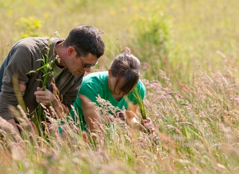 Two people conducting a grassland survey
